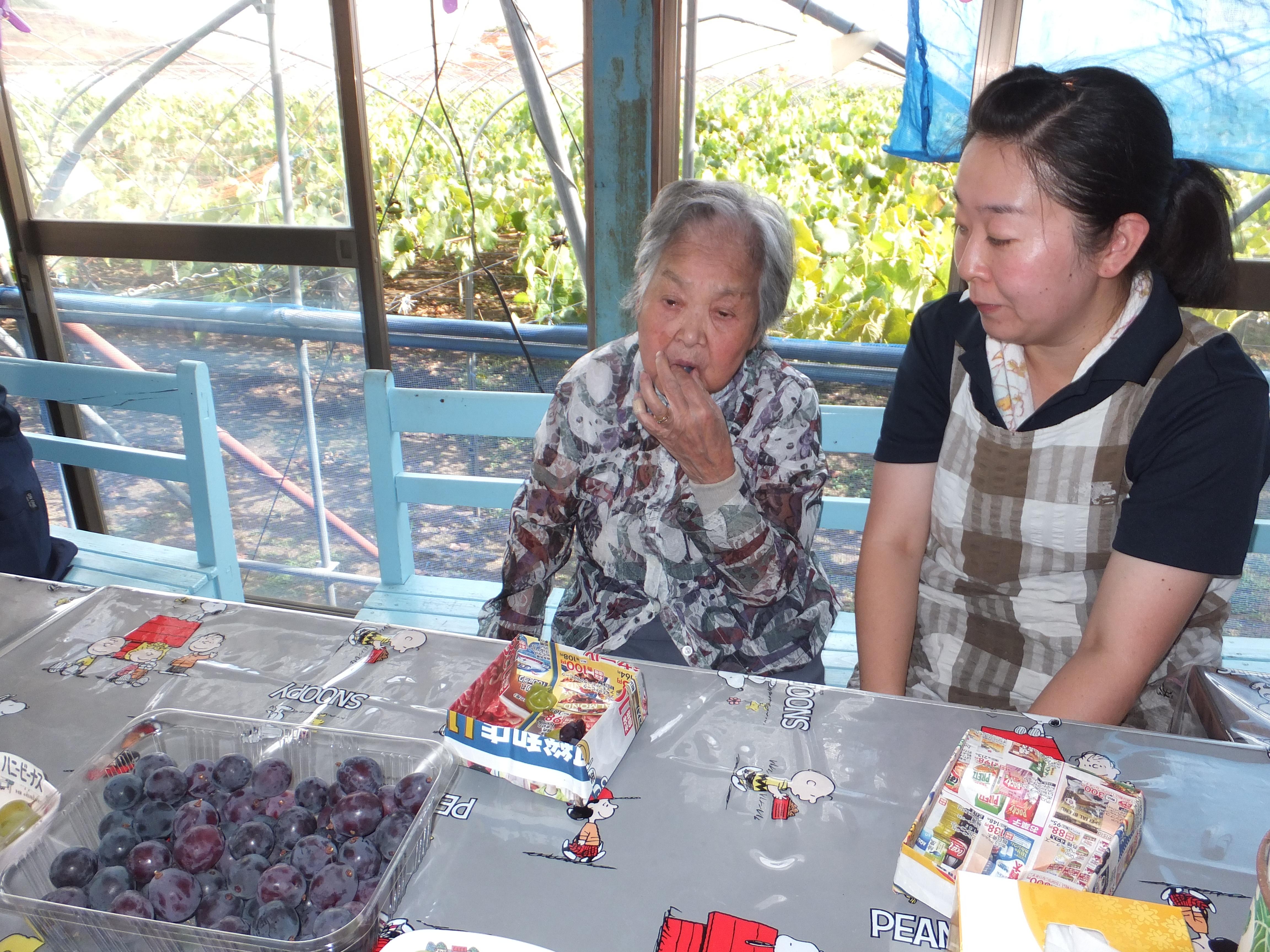 ぶどう 団地 大平 栃木市でぶどうといえば大平町ぶどう団地。今が旬のぶどうを食べてみた